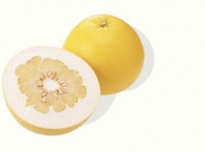 世界一の柑橘類 ばんぺいゆ