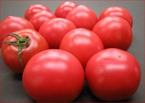 八代産トマト